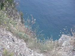 Разбежавшись, спрыгну со скалы...