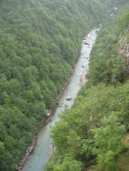 Вид с моста через реку Тару