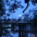 полная луна над мостом у диорамы 2018