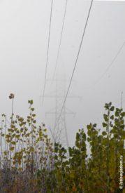 Провода ЛЭП из тумана