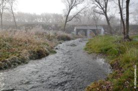 Река Гостёнка в тумане